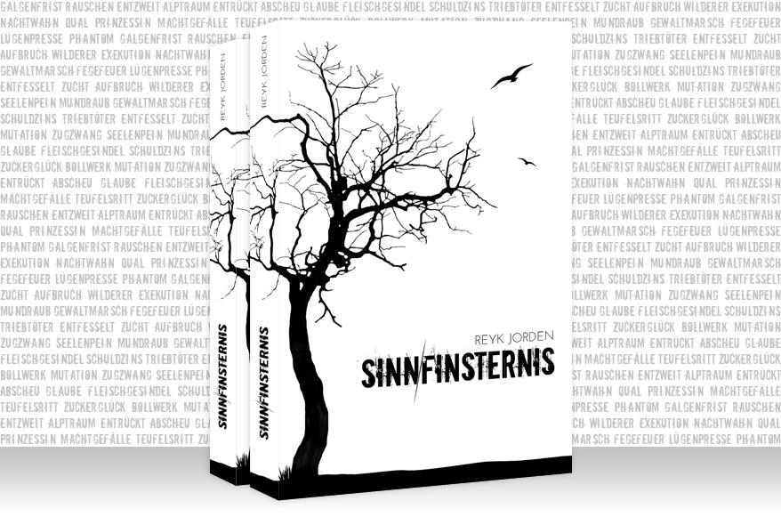 Reyk Jorden - Sinnfinsternis Cover